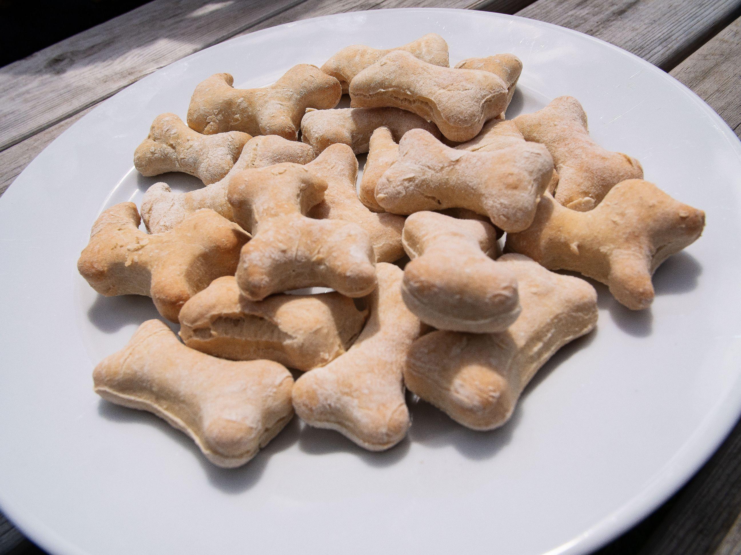 Homemade hondenkoekjes verjaardagsfeestje
